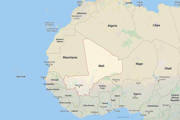 35 soldiers killed in militant attack in Mali