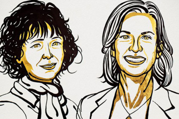 Two scientists won Nobel chemistry prize for gene-editing tool
