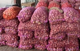 Duty on onion import withdrawn