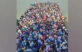 Daytime ferry service halted
