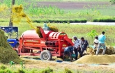 Sectoral growth ensured due to India's ADP: UNDP