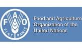 Bangladesh elected as FAO Council member