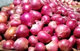 Commerce ministry requests NBR to withdraw duty over onion import